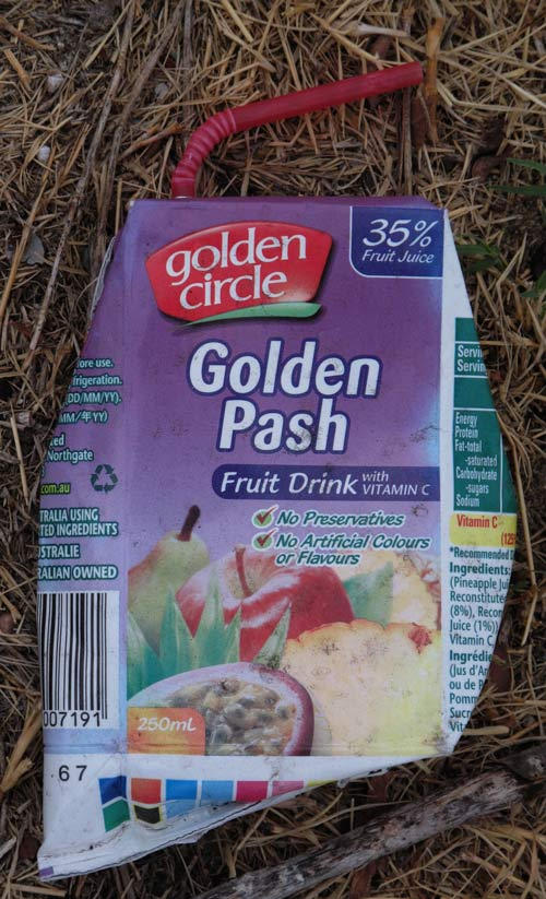 goldenpash
