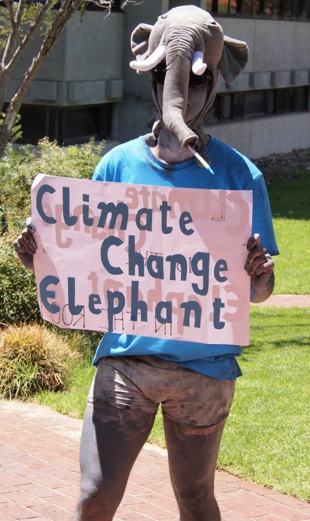 climate change elephant