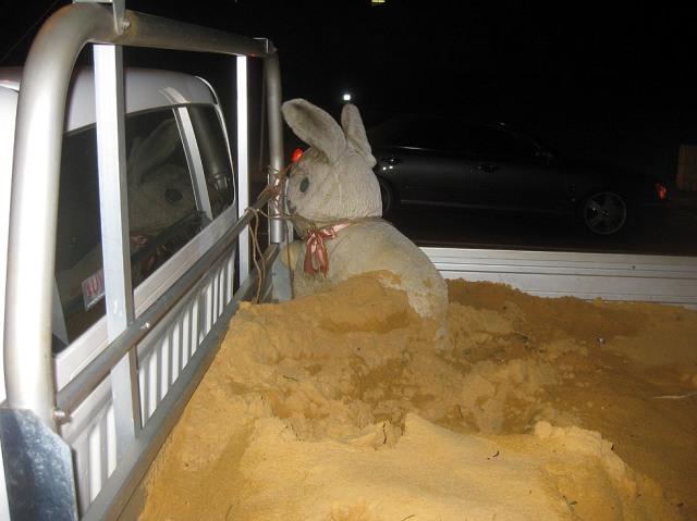 sand_rabbit2_bayswater